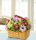 1-800-Flowers - Spring Inspiration - Small