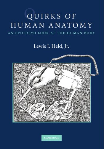 Quirks of Human Anatomy: An Evo-Devo Look at the Human Body