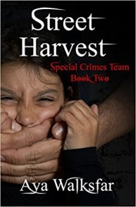 Special Crimes Team Book Two