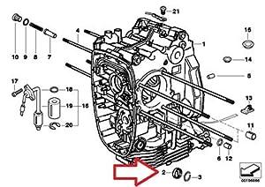 Amazon.com: BMW Genuine Engine Block Oil Level Indicator