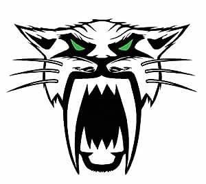 Amazon.com: Arctic Cat Decal: Automotive