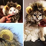 ZN Pet Costume Lion Mane Wig Hat for Dog Cat Halloween Cosplay Accessory