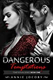 Dangerous Temptations: Temptations Series Book One: The Gallagher Family