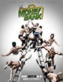 WWE: Money in the Bank (2013)