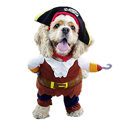 Best Halloween Costumes For Big Dogs