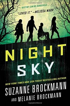 Night Sky by Suzanne Brockmann| wearewordnerds.com