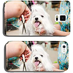 Maltese dog haircut at the beauty salon for animals cell phone cover case iPhone5