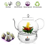 Tea Beyond Teapot Set Teapot Polo 45 Oz/1330 Ml Tea Warmer Wave and Fab Flowering Tea 4 Cts Blooming Tea Set Flowering Tea Gift