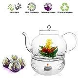 Tea Beyond Teapot Set Teapot Polo 45 Oz/1330 Ml Tea Warmer Wave and Fab Flowering Tea 4 Cts Blooming Tea Set Flowering Tea Gift