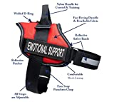 "Service Animal Vest with 2 Reflective ""EMOTIONAL SUPPORT"" Patches, by Industrial Puppy (XS, Fits Girth 15-22"", Bright Red)"