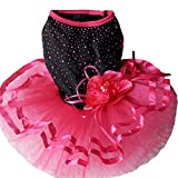 TOPSUNG Pet Blingbling Tutu Dress Red&Black Lace Dog Skirt Small Cats / Dogs Clothes, Asia Size S