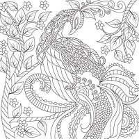 Best Adult Coloring Book (Double Size) - 140 Pages with 68 ...