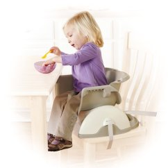 Rainforest High Chair Desk Singapore Fisher Price Spacesaver Friends