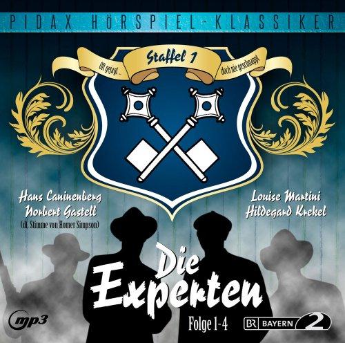 Die Experten – Staffel 1 (pidax)