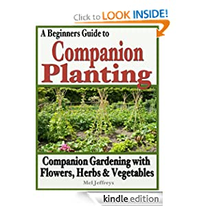 Beginners Guide to Companion Planting