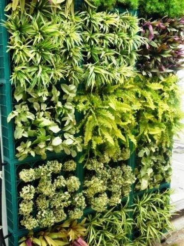 Vertikale Grten  Ideen fr einen senkrechten Garten