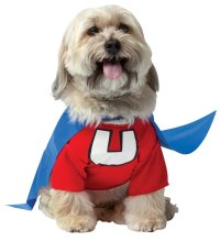 Superhero Costumes for Your Dog