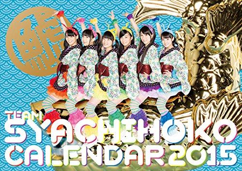 チームしゃちほこ PHOTO カレンダーBOOK2015