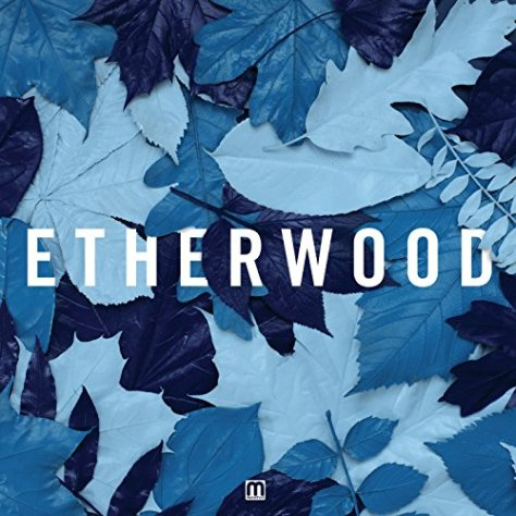 Etherwood-Blue Leaves-CD-FLAC-2015-DeVOiD Download