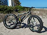 1000 Watt Xtreme E-Cherokee Fat Tire E-Bike