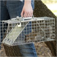Havahart 1083 Easy Set One-Door Cage Trap for Squirrels ...