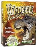 発掘 セット ティラノサウルス 恐竜 考古学 発掘体験 化石恐竜 骨格 標本 教育玩具 import おもちゃ 学習