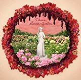 Secret Garden(初回生産限定盤)(DVD付) - チャラ