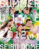 「ももクロ夏のバカ騒ぎ SUMMER DIVE 2012 西武ドーム大会」  LIVE BD-BOX [Blu-ray] / ももいろクローバーZ (出演)