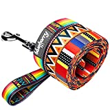 Blueberry Pet 3/8-inch by 6-Feet Elite Basic Nylon Dog Leash for Puppy with Flame Stitch and Henley Stripes, X-Small