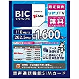 OCN SIMカード後日配送 [LTE対応・データ通信/音声通話(SMS機能付き)] BIC モバイル ONE 【ビックカメラグループオリジナル】