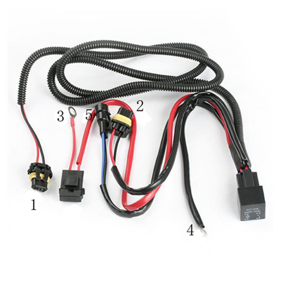 hight resolution of kensun hid relay harness install 32 wiring diagram 01 maxima ignition harness bosch relay harness