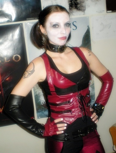Batman Arkham City Secret Wishes Sexy Harley Quinn Costume Adult Sized Costumes