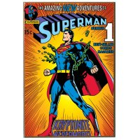 "DC Comics Superman Breaking Chains V Wood Wall Art, 13"" by ..."