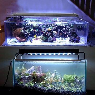 led aquarium lighting