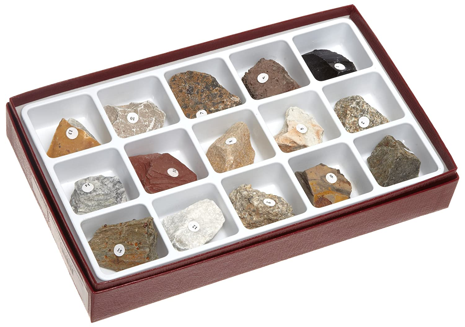 American Educational Introductory Rock Collection New