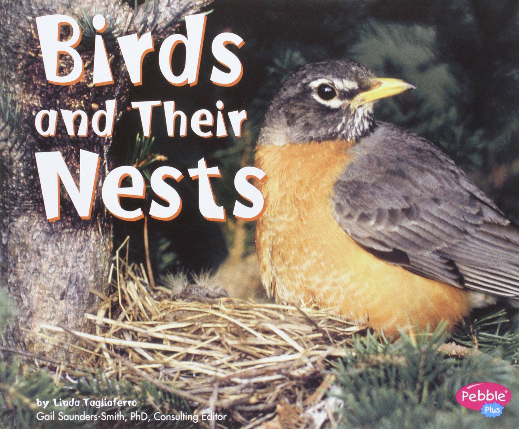 Bird Nature Study Series Free Printables Resources