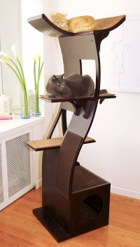 Best Cat Tree Without Carpet Ideas - Cool Cat Tree Plans