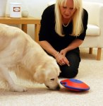 best mental stimulating dog toy