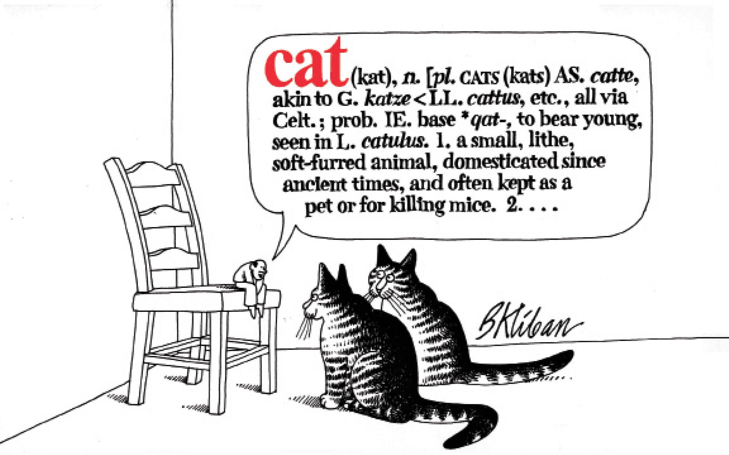 Cat PDF B. Kliban