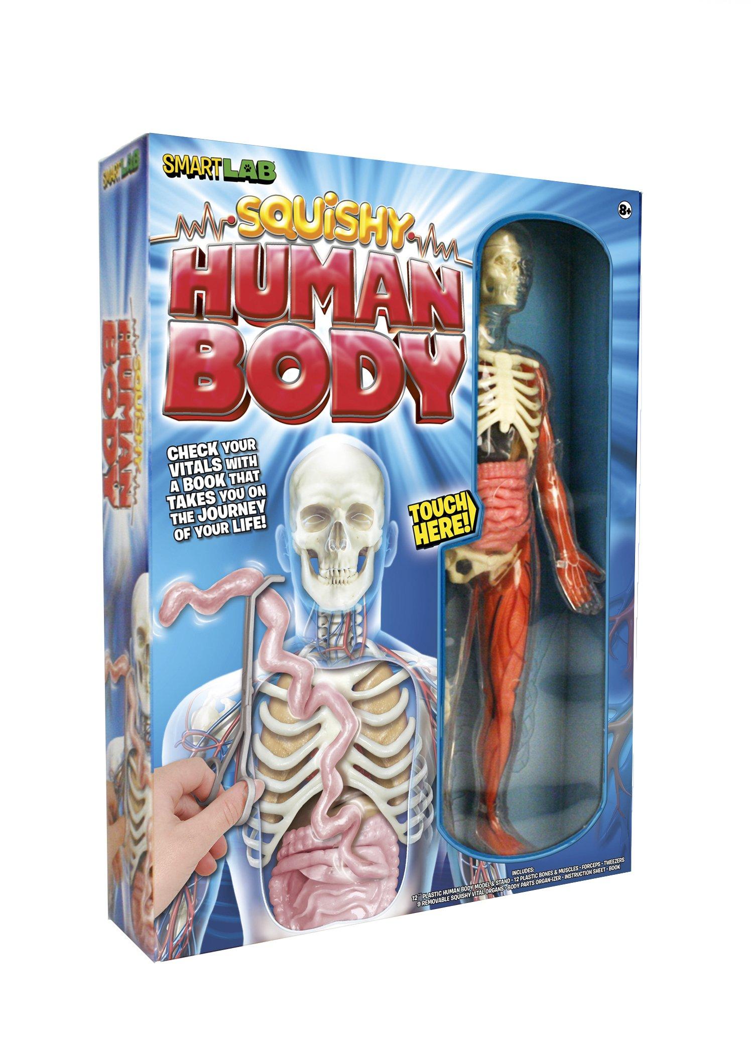 Smartlab Toys Squishy Human Body Educational Science Kids