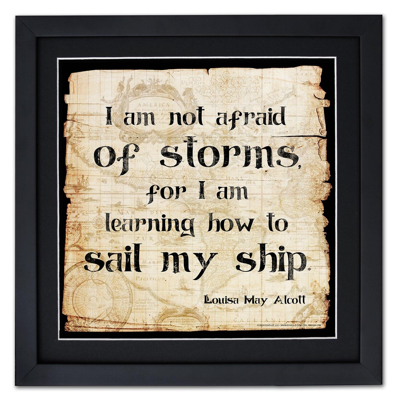 Not Afraid of Storms Framed Motivational Poster