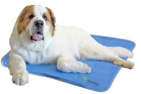 Cool Pet Pad from The Green Pet Shop XL Self Cooling No ...