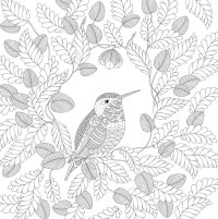 Free coloring pages of millie marotta's