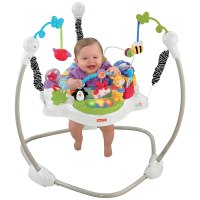 Fisher Price Discover and n Grow Jungle Piano Jumper ...