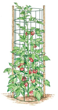 Garden. Table. Community. : 3 Simple Ways to Trellis ...