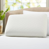 Best Pillow for Allergies: Stop the Sneezing and Sleep ...