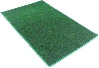 Astro Turf Carpet