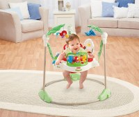 NEW Fisher Price Rainforest Jumperoo Baby Jumper Walker ...