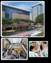 eczema support group singapore
