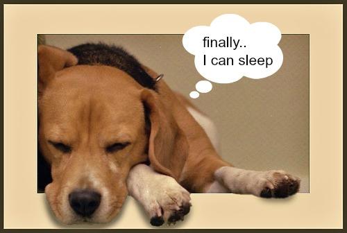 Eczema_devotional_sleep